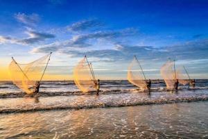 Đánh cá lúc bình minh của ngư dân Nam Định