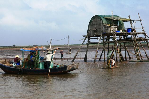 Chòi ngao ở Nam Định