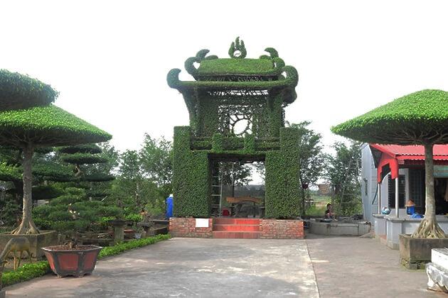 Làng cây cảnh Vị Khê ở Nam Định