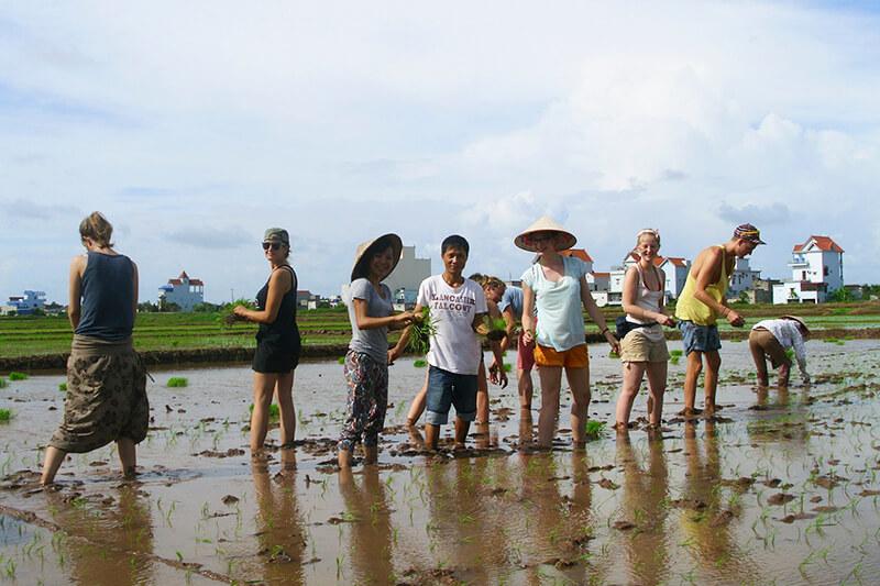 Sản phẩm du lịch sinh thái nông nghiệp