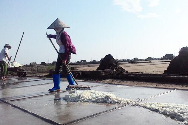 cánh đồng muối Bạch Long ở Nam Định
